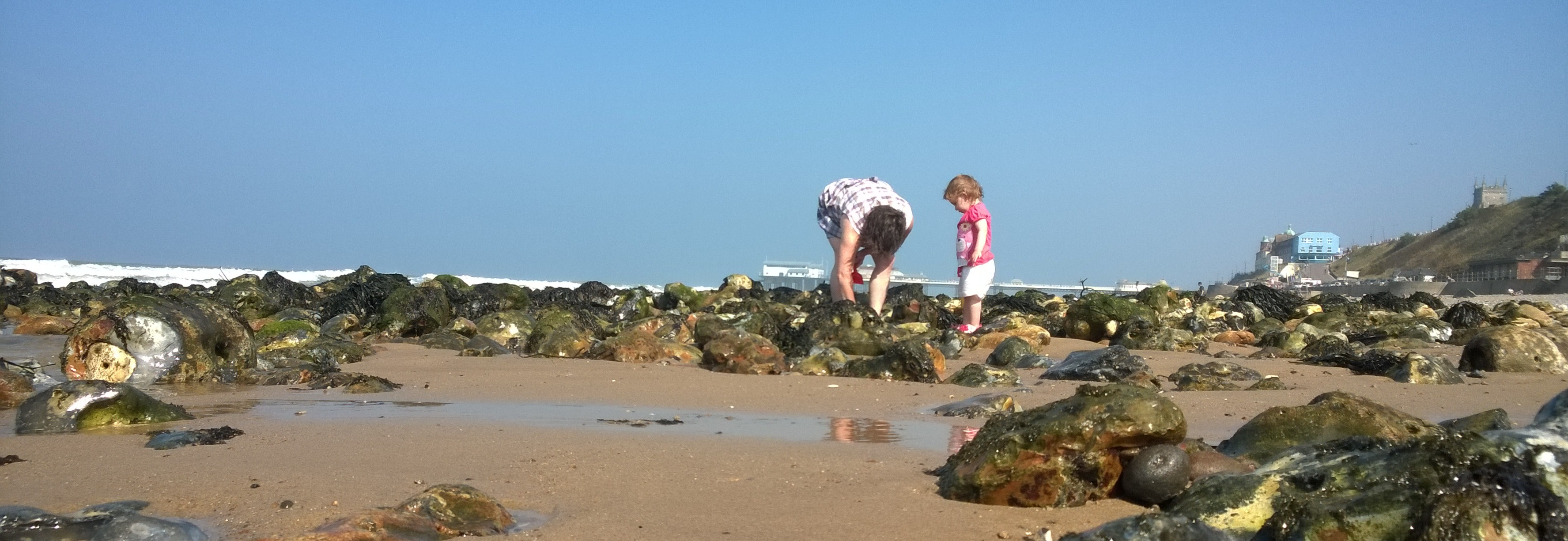 Rock pools at the beach...?