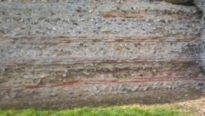 Layers of the wall